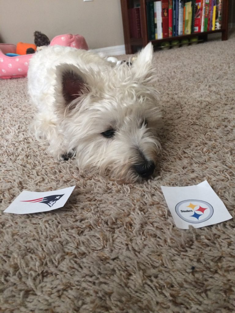 Garnet is rolling with the Steelers!